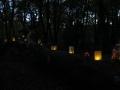 Lichterfest-2014-5